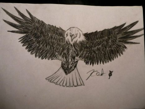 Whitehead Eagle_this one is much better^^ by 99Sechmet