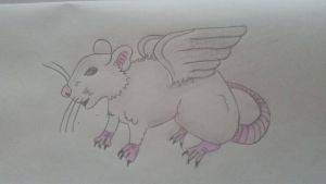 Rat with wings by Daunenfein