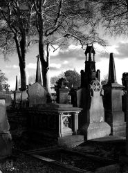 Glasnevin Cemetery VI by CadenReid