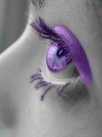 Purple Eye by Graciebug
