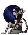 Space catfox by N-o-x-y