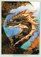 June ACEO: Crista Duo by spocha