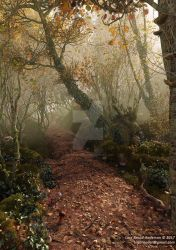 Autumn Pathway by neanderdigital
