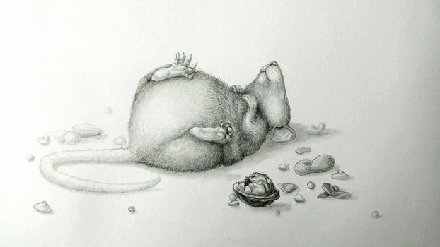 Fat Rat by Zaza-Art