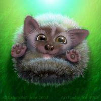 Little Hedgehog by shatos