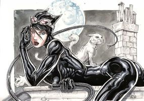 CATWOMAN commish by Vinz-el-Tabanas