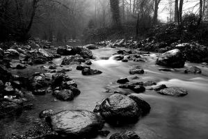 Misty River by LucAnthonyRossiter