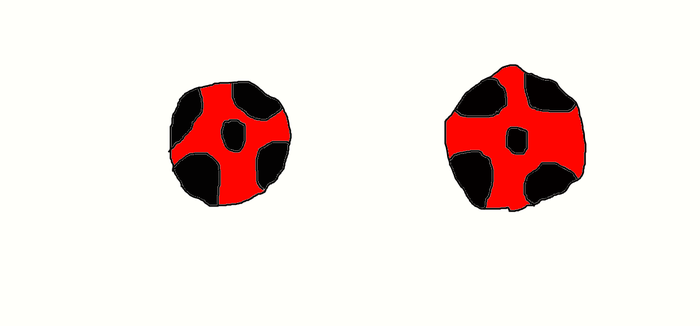 the lady bug miraculous by hero1211