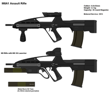 US Army M8 Rifle by PaintFan08