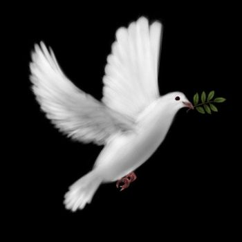 The Dove of Peace by hpatps1