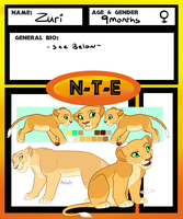 NTE Application- Zuri by oCrystal
