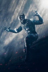 Black Panther by AcCreed