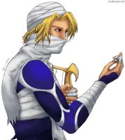 Sheik - no background by cyen