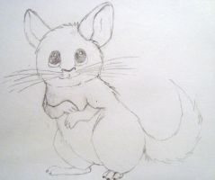 Moonshadow the Chinchilla by scarlet-pikachu