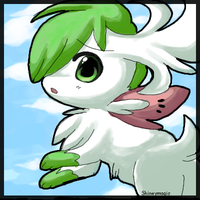 First Sky Shaymin Attempt
