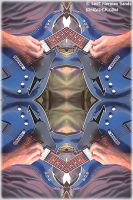 Bob Weir Mirrored Guitar by ratdog420