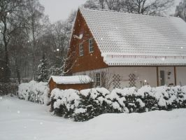 Snowy Home by MrRacoon