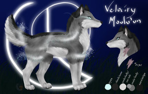 Velocity Reference SO OLD DO NOT LOOK AT by ChocolateQuill