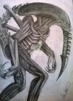 Alien by Anthon1984