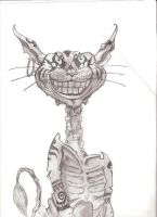 Cheshire Cat by honeyandgrime