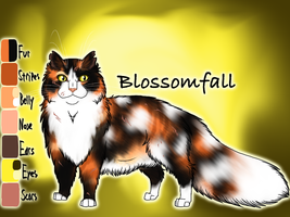 Blossomfall of ThunderClan - Trail of Ashes by Jayie-The-Hufflepuff