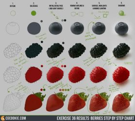 Exercise 36 Results: Berries Step by Step Chart by CGCookie