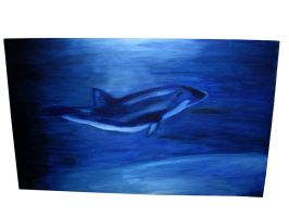 delphin by land3