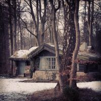 frozen forrest house by karinasuhr