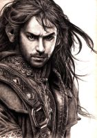 Kili of the House of Durin by devsash