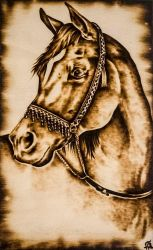 Horse by FuocoRupestre