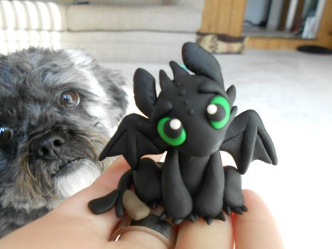 Toothless Revisited by SkipperSara