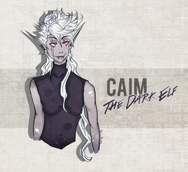 Caim, The Dark Elf! by inanoakuma
