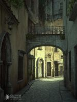 Streets of Florence by geograpcics