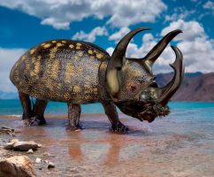 Rhino Beetle by ozplasmic