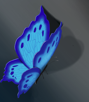 Butterfly by phenabeana