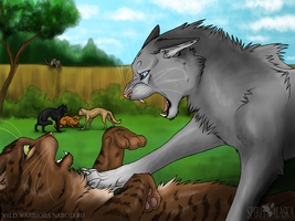 A Lesson to Kittypet Thieves by Spirit-Of-Alaska