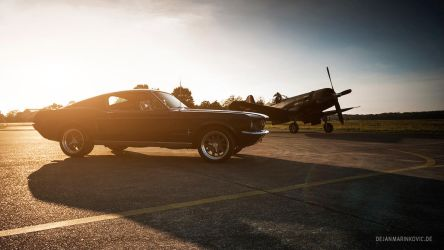 Fastback and Corsair by AmericanMuscle