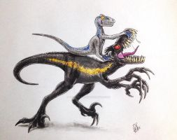 IndoRaptor Vs Blue by Got-The-T-REX