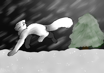 Catto in the snow by 77Cessation77