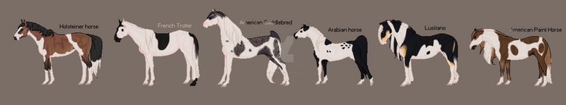 Pinto Adopts (2/6) OPEN by AshleyInspirations
