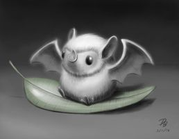 Honduran White Bat by TheDude-In-NavyBlue