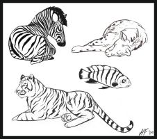 Zoo Trip Pen and Ink Studies by Mogira