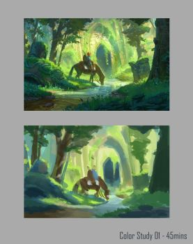 Color Study 01 - 45mins by Seivo