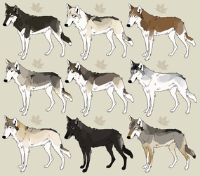adoptables [closed] by sighthounds
