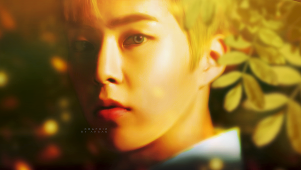EXO CBX (Xiumin) - Blooming Day by Ann-ArcaD