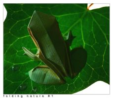 folding nature 1 by orsobrusco