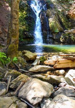 Summer at Park Creek by StephGabler