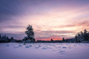 Freezing Sunrise by artmobe
