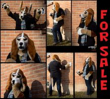 Basset Hound Fursuit! by ScardyKat