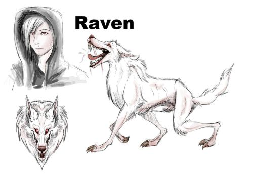 Raven- Wolf Manor Character Reference by albinoraven666fanart